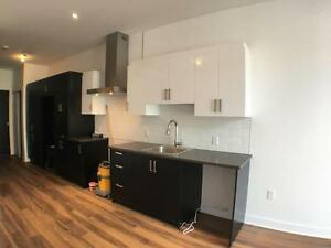 INCROYABLE CONDO à LOUER CHARLEVOIX BRAND NEW TWO BEDROOMS