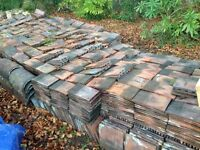 Plain clay roof tiles