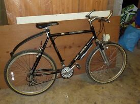 Raleigh Man's Bicycle