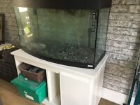 Fish Tank Fluval Vicenza 260 Full Set Up
