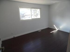 Renovated 3 Bedroom Town homes Available Feb 1st Kitchener / Waterloo Kitchener Area image 8