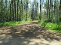 SLAVE LAKE1/2 acre lot  ,40 foot gravel pad nice sale or rent