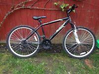 Boys 17 inch bike