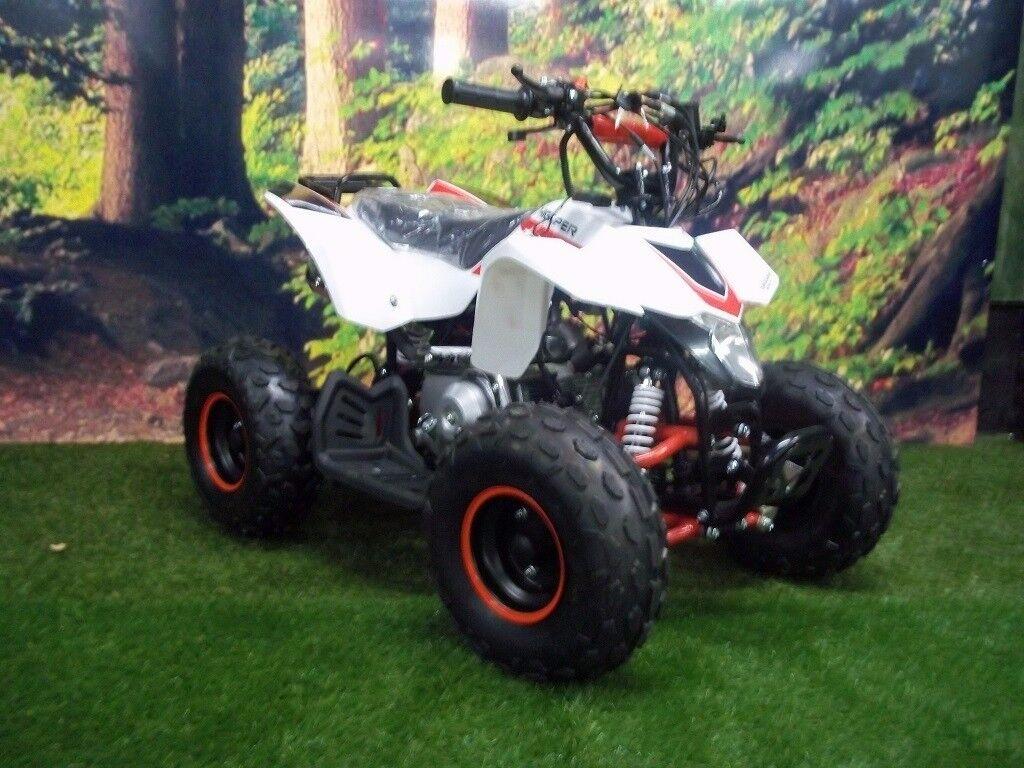 110cc thunderstarter quad bike