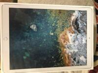 iPad Pro 64gb 12.9 WiFi cellular