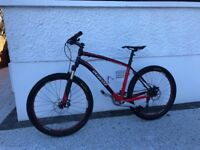 Specialized stumpjumper 19""