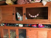 Double and single rabbit cages for sale
