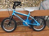 Sunbeam challenger kids bike