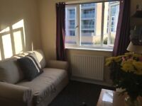 Perfect E14 single room. Tower Hamlets, Limehouse DLR. 15 min to Bank & Canary Wharf. Today