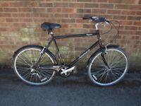 Classic Town Ammaco Royale Bike
