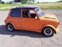 Rover, Mini