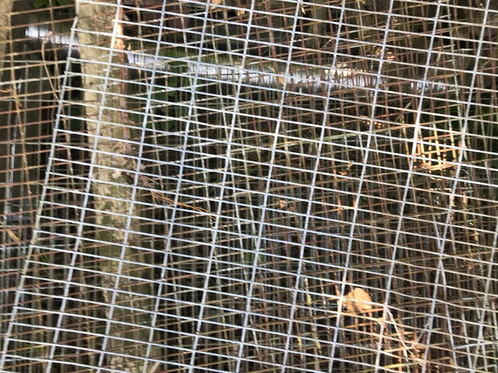 Chicken wire heavy duty fox proof | in Attleborough, Norfolk | Gumtree