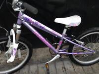 Girls specialized bike