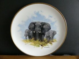 Elephant - The David Shepherd Wildlife Collection, commissioned by Spink Modern Collections