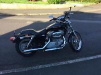 Harley Davidson xl883c