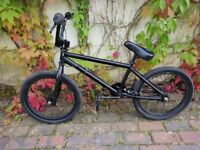 Blacked Out Hoffman 20in BMX Bike