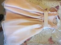 Pale Blush Bridesmaid Dresses - New with tags