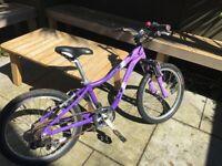 kids bike - Specialized Hotrock 20 (purple)
