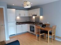 No Admin Fees, modern 1 bedroom flat, city centre, 2 mins to Cabot Circus, furnished.