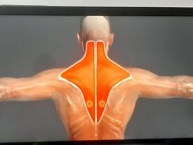Male massage** therapist back neck and shoulder pain relief