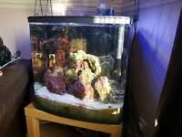 Kent 94 bio marine aquarium
