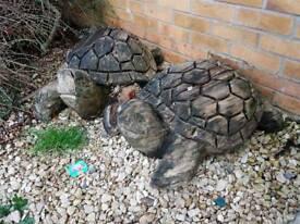Carved wooden turtles