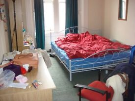 Edinburgh room to rent from 16 August. Short or long term. Suit visiting student. Ideal for couple