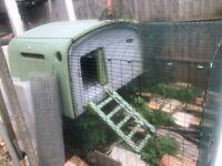 Large Eglu cube Chicken coop