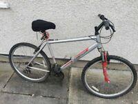 2 x Mountain bikes 1 x BMX All needing work