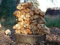Firewood Logs : Hardwood split logs in net bags.