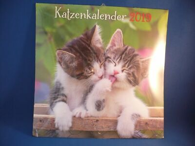 ZWEI Fotokalender Bildkalender 2019 - KATZEN, 30x30cm, z. Aufhängen !