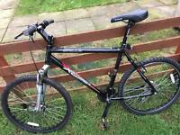 Large men's mountain bike