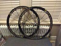MAVIC Ksyrium PRO DISC wheelset + tyres & tubes, brand new.