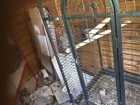 Large aviary parrot cage for sale