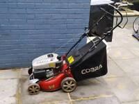 Cobra lawnmower