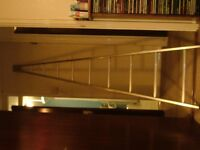 Ramsay aluminium pointed ladder with rubber point, window cleaning/decorating etc...