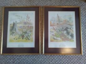 Two naturalist framed prints: Rosebury Topping, North Yorkshire and Ashness Bridge, Cumbria