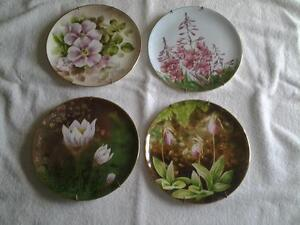 Collector Plates  -  Flowers of the Provinces
