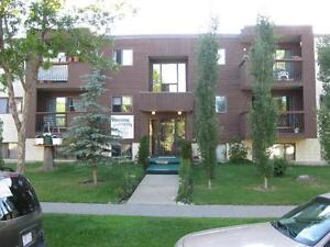 1 Bachelor Apt avail. Now - Close to Downtown and NAIT!