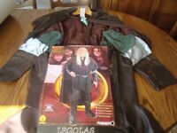 Lord of The Rings, Legolas Adult Costume / Fancy Dress