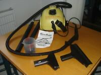 Steam buggy easy to use steam cleaner