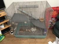 Ferplast Jenny Rat Cage