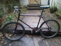 Mountain bike 26'' Diamond back, model Sorrento.