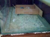 650ltr Fish tank
