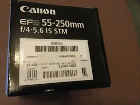 Canon Fit EFS 55-250mm f/4-5.6 IS STM Zoom Lens for Canon DSLR Camera