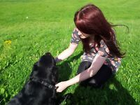 Treks & Tails Dog Walking Service