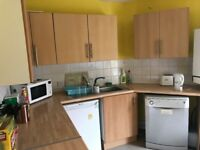 1 DOUBLE BEDROOM IN LOVELY 6 BED STUDENT FLAT SMITHDOWN ROAD