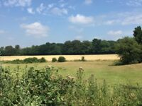4 Acre Rural Campsite Retreat near Brands Hatch BSB Championship 21st July!