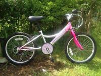 Falcon Montare Bike