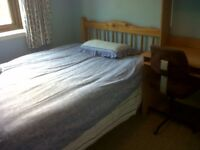Double room,opp napier uni morningside,student only